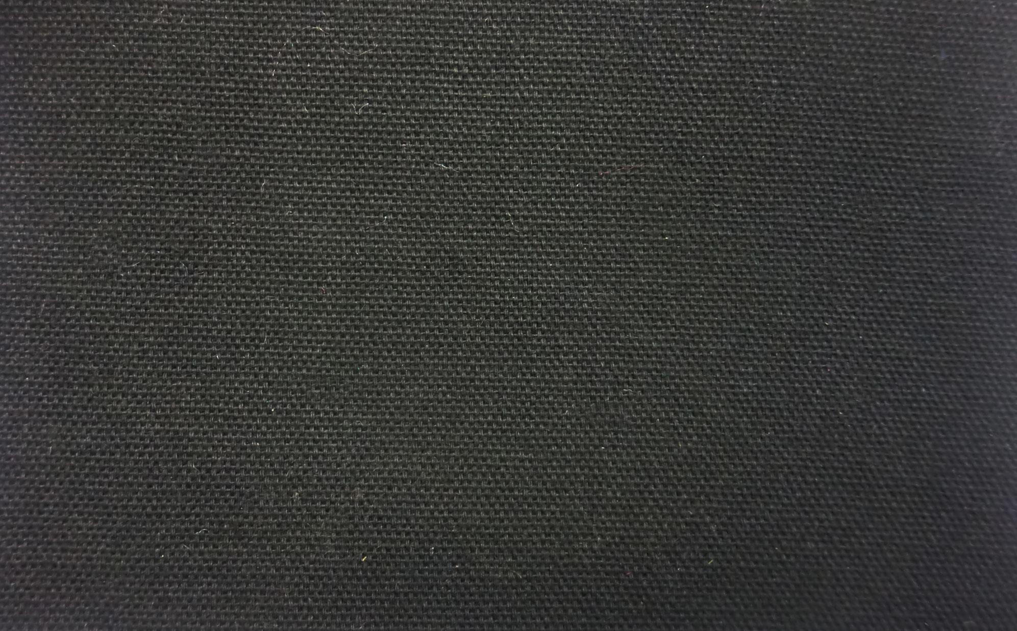 James Thompson Duck Canvas Black Fabric