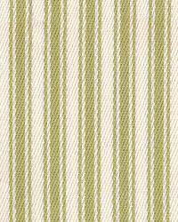 Kahuna Stripe IO Willow by