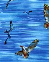 Seagulls Blue by