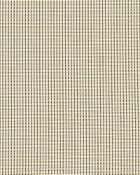 Yellow Phifer 3000 Fabric  3000 Custard Cream