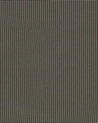 Brown Phifer 3000 Fabric  3000 Espresso