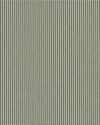 Phifer 3000 Fabric  3000 Honey Sage