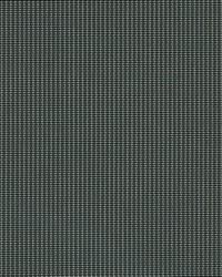 Grey Phifer 3000 Fabric  3000 Ninja Grey