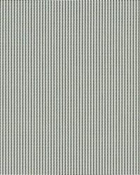3000 Pale Grey by