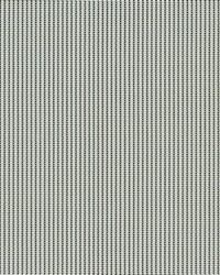 Grey Phifer 3000 Fabric  3000 Pale Grey