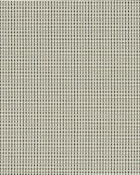 Phifer 3000 Fabric  3000 Sand Dollar