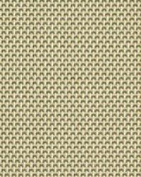 Phifer 4100 Phifer Sheerweave Fabric