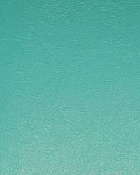 Aqua Turquoise  by