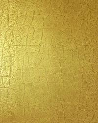 Classico Gold by
