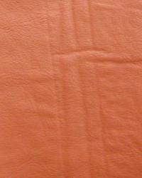 Galaxy Burnt Orange  by