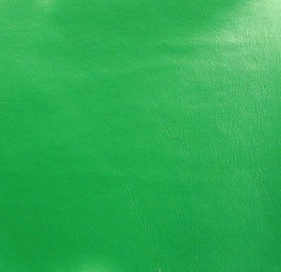 Galaxy kelly green for Galaxy headliner fabric