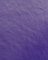 Galaxy Purple  by