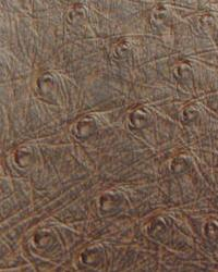 Brown Animal Skin Fabric  Ostrich Brown