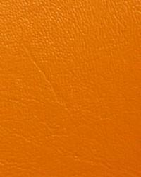 Promo Vinyl Orange  by