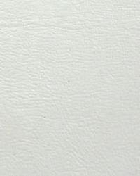 Promo Vinyl White  by
