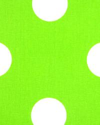 Oxygen Chartreuse White by  Premier Prints