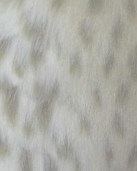 Snow Leopard Fur  by