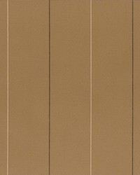 Sheldon and Barnett DelGrande Taupe Fabric