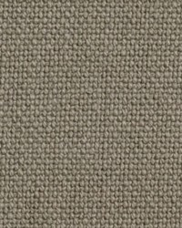 Sheldon and Barnett Lama Solid Grey Fabric