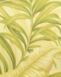 Classic Tropical Fabric