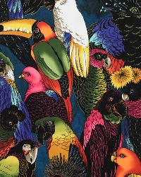 Birds of a Feather Multi by