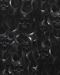 Black Hot Fabrics  Skulls on Fire Black