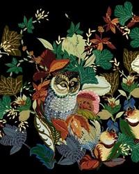 Harvest Owl Black by