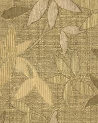 Chameleon Driftwood by