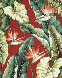 Big Kahuna Bird of Paradise Burgundy Fabric