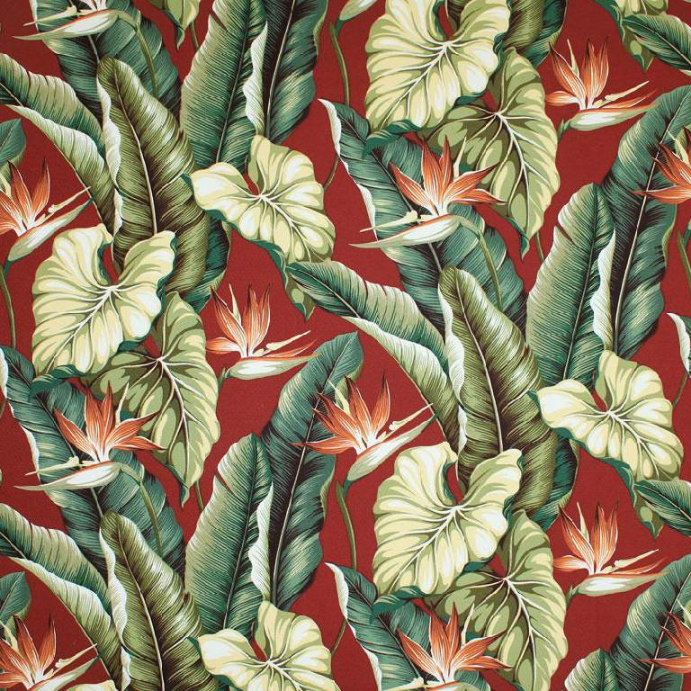 Big Kahuna Fabrics Bird Of Paradise Burgundy