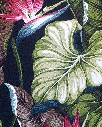 Big Kahuna Bird of Paradise Black Fabric