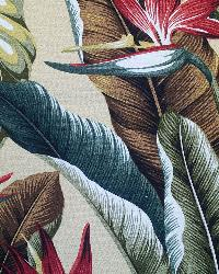 Big Kahuna Bird of Paradise Natural Fabric