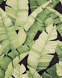 Big Kahuna Manele Black Green Fabric