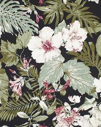 Big Kahuna Tropical Garden Black Fabric