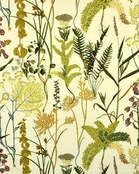 Braemore Fern Spring Fabric