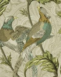 Pheasant Hunt Birch by