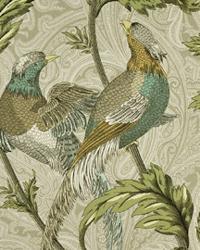 Pheasant Hunt Birch by