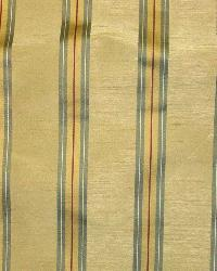 Priene Midas by  Bravo Fabrics International LLC
