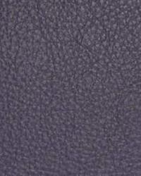 The Symphony Fabric  Classic Iris