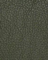 The Symphony Fabric  Classic Ivy