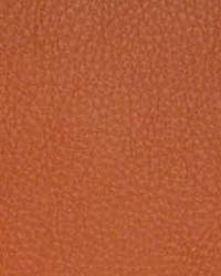 The Symphony Fabric  Classic Persimmon
