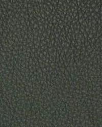 The Symphony Fabric  Classic Spruce