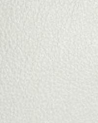 The Symphony Fabric  Classic White