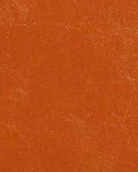 Glaze Sequoia by