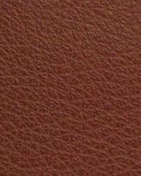 Beige The Symphony Fabric  Canyon-Cordovan