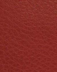 Beige The Symphony Fabric  Canyon-Red Rock