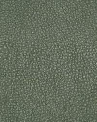 The Symphony Fabric  Persuasion-Jalapeno