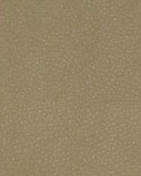 The Symphony Fabric  Persuasion-Sand