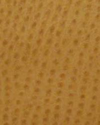 Beige The Symphony Fabric  Phoenix-Ochre