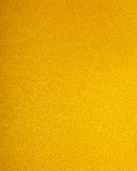 Suede Canary by